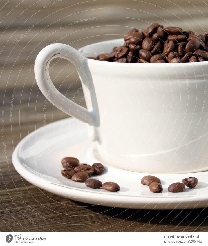 tasse kaffee gefällig? Erholung ruhig Wärme Holz braun Zufriedenheit genießen weich Kaffee viele Wohlgefühl heiß harmonisch Duft Tasse Sinnesorgane
