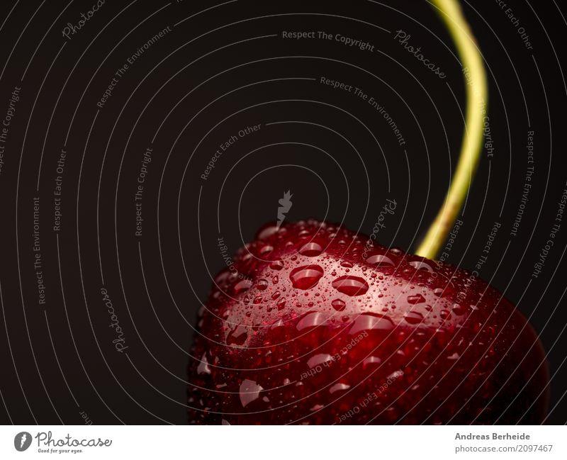 Süßkirsche Sommer Gesundheit Frucht frisch Wassertropfen süß lecker Bioprodukte Erfrischung Kirsche vitaminreich