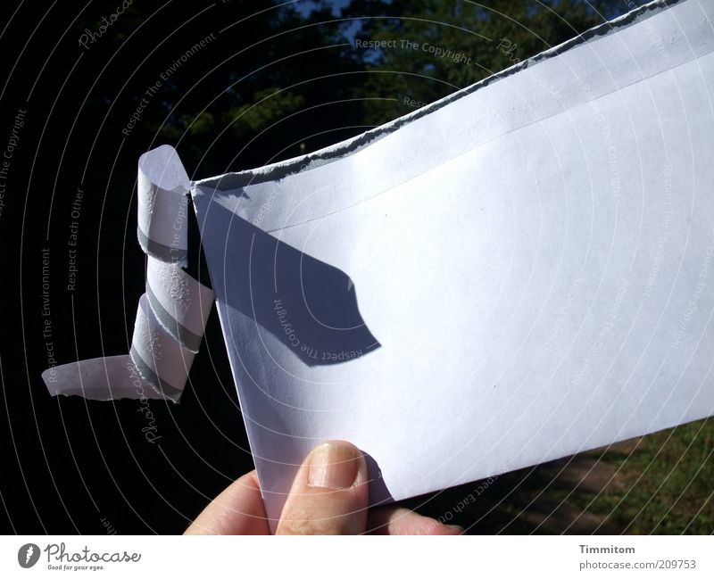 Eigenleben Post Schreibwaren Papier Kommunizieren weiß Brief Briefumschlag offen Briefgeheimnis Textfreiraum Adressat Farbfoto Außenaufnahme Tag Schatten