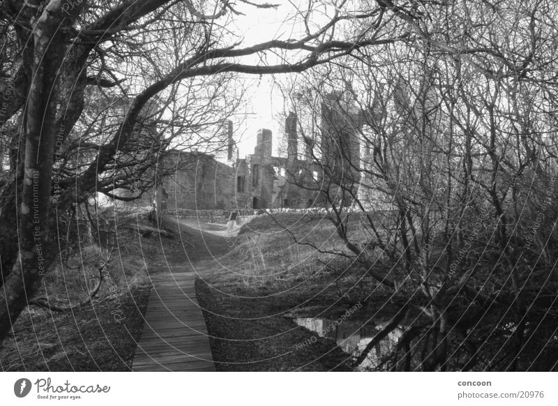 Agatha Christie's Moorlands.. Ruine dunkel grauenvoll unheimlich Schottland morsche Bäume Burg oder Schloss