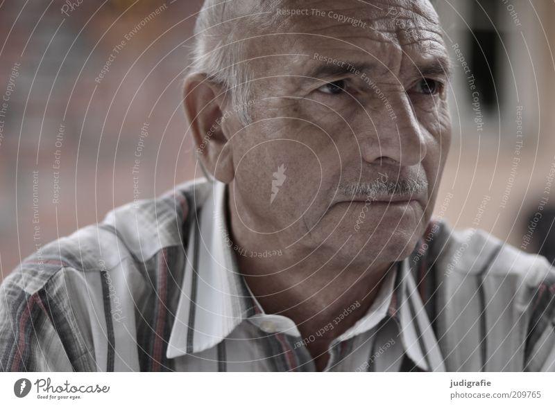 Siebenundsiebzig Mensch Mann Gesicht ruhig Senior Kopf Denken Haut Neugier hören Hemd Porträt Weisheit Oberlippenbart Verständnis Blick