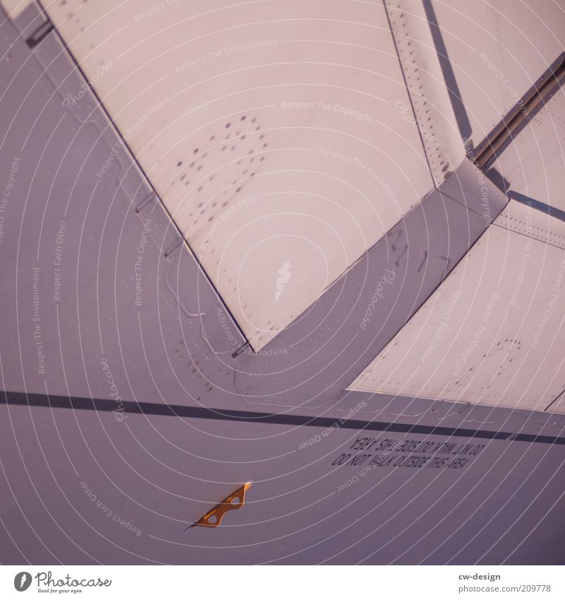DO NOT WALK weiß grau Flugzeug Verkehr Sicherheit Luftverkehr Tragfläche Textfreiraum links Verkehrsmittel abstrakt Passagierflugzeug Flugzeugteile