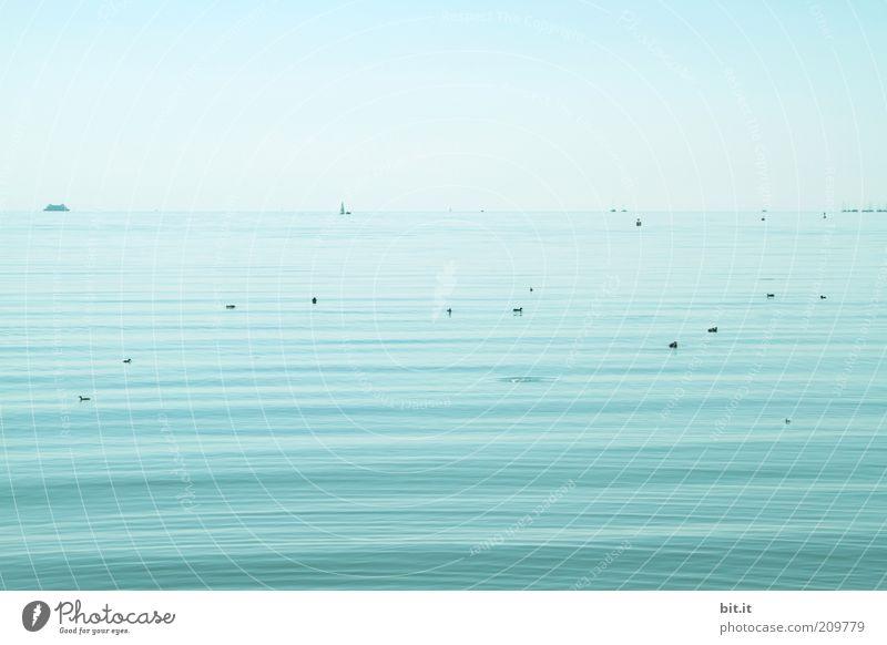 der mit dem Blubb Natur Wasser Himmel Meer blau Sommer Ferien & Urlaub & Reisen ruhig Einsamkeit Ferne Erholung See Luft Zufriedenheit Wellen nass