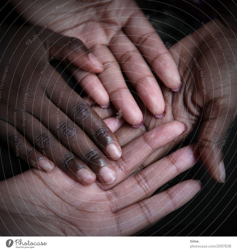 Lebenselixir | Caring, Diversity and Humanity feminin Haut Hand Finger 2 Mensch Linie festhalten liegen Zusammensein natürlich schön Zufriedenheit Lebensfreude