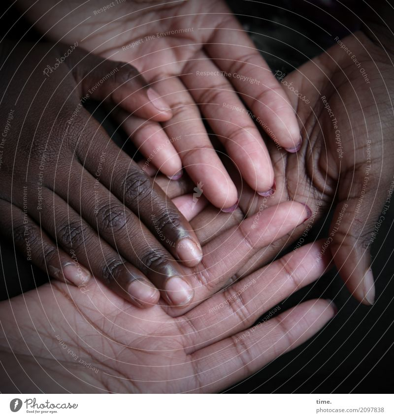 Lebenselixir   Caring, Diversity and Humanity Mensch schön Hand natürlich feminin Zusammensein Linie Zufriedenheit liegen Haut authentisch Finger Lebensfreude