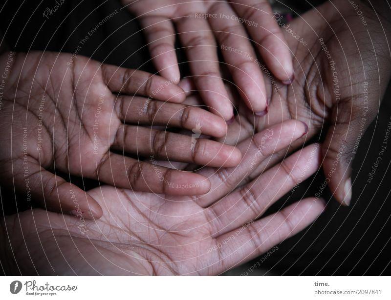 Lebenslinien #112 feminin Mädchen Frau Erwachsene Haut Hand Mensch Linie festhalten liegen Leidenschaft Sympathie Zusammensein ruhig ästhetisch Design entdecken