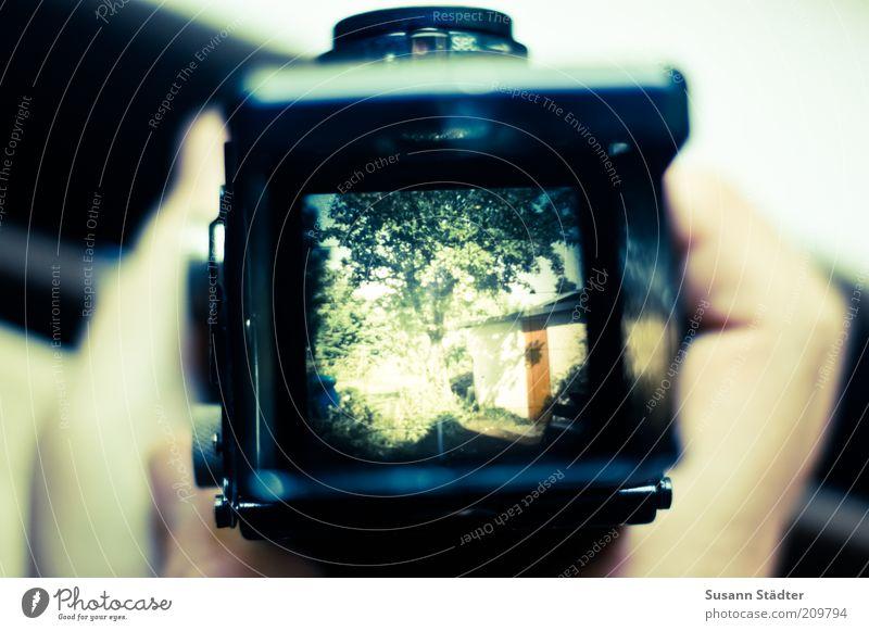 grünes zu Hause Hütte Blick Kamerawurf Rolleiflex Fotokamera Mittelformat Rollfilm analog Sucher Hand festhalten Objektiv Garten 1932 Erbe Gedeckte Farben