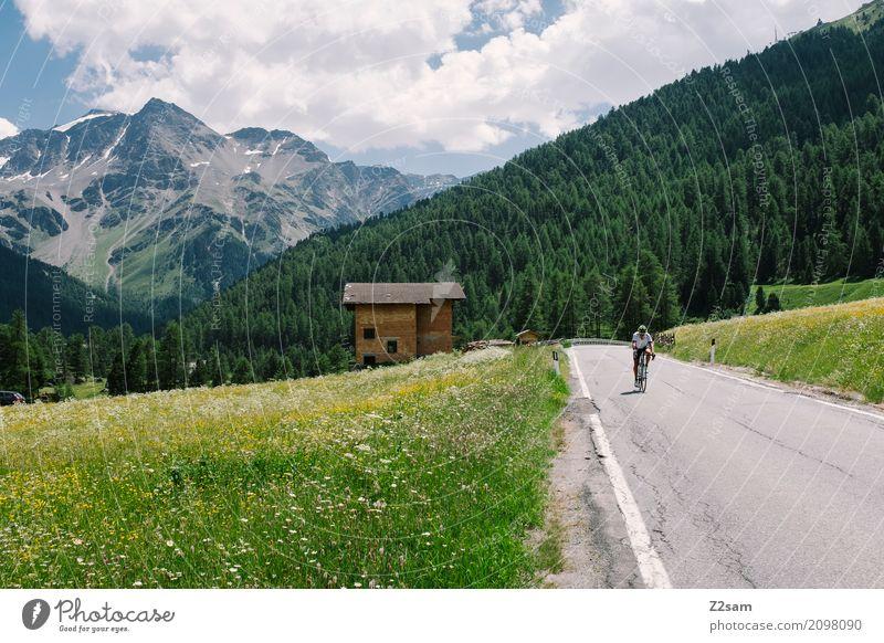 Tour de Dad Freizeit & Hobby Ferien & Urlaub & Reisen Berge u. Gebirge Sportler Fahrradfahren Mann Erwachsene 45-60 Jahre Natur Landschaft Sonne Sommer