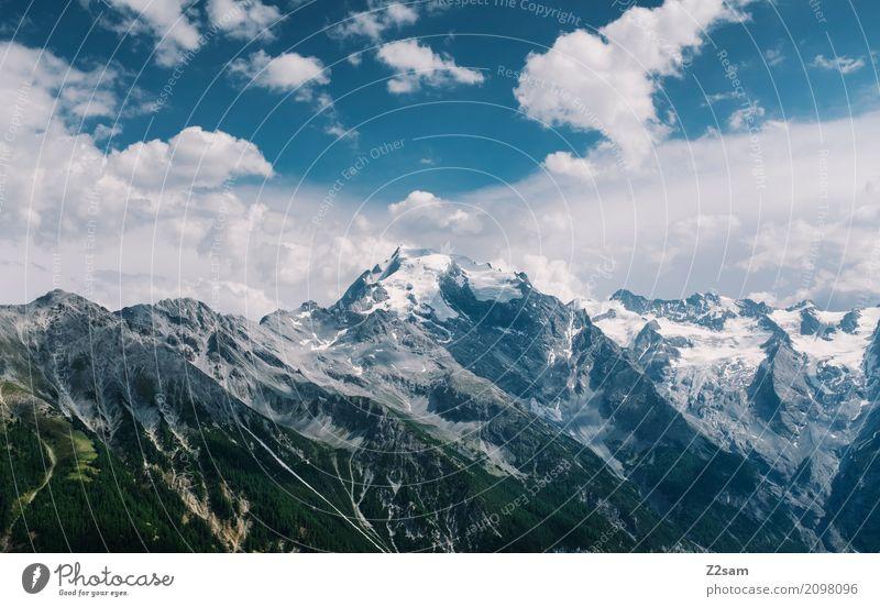 Ortler Natur Landschaft Himmel Wolken Schönes Wetter Alpen Berge u. Gebirge Gipfel Gletscher gigantisch hoch kalt blau Einsamkeit Freiheit Idylle Klima