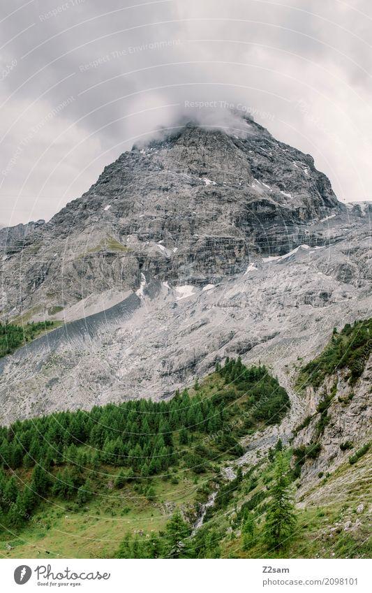 raucher Umwelt Natur Landschaft Wolken schlechtes Wetter Nebel Wald Felsen Alpen Berge u. Gebirge Gipfel Gletscher bedrohlich hoch kalt grau grün Abenteuer