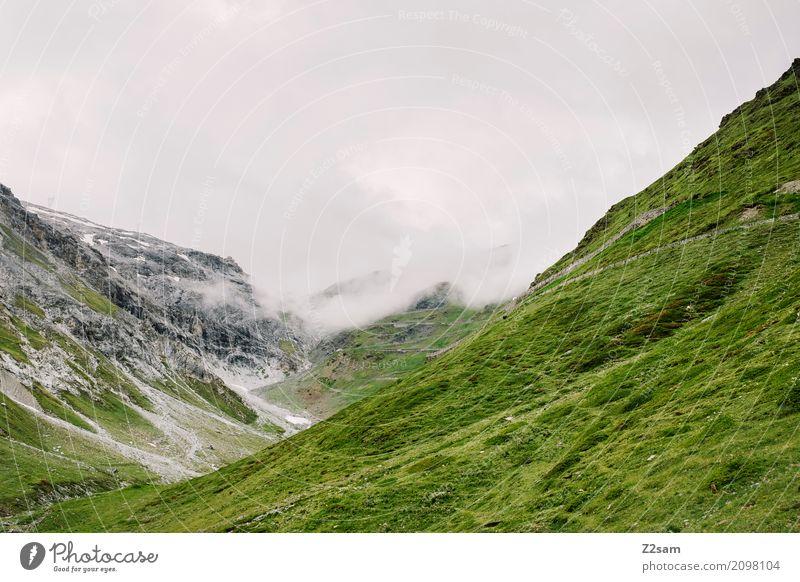 Passo dello Stelvio Umwelt Natur Landschaft schlechtes Wetter Nebel Wiese Felsen Alpen Berge u. Gebirge Gipfel Gletscher Straße Wege & Pfade bedrohlich dunkel