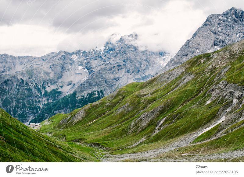 Stilfser Joch Umwelt Natur Landschaft Himmel Wolken schlechtes Wetter Felsen Alpen Berge u. Gebirge Gipfel Gletscher gigantisch hoch grün Abenteuer Einsamkeit
