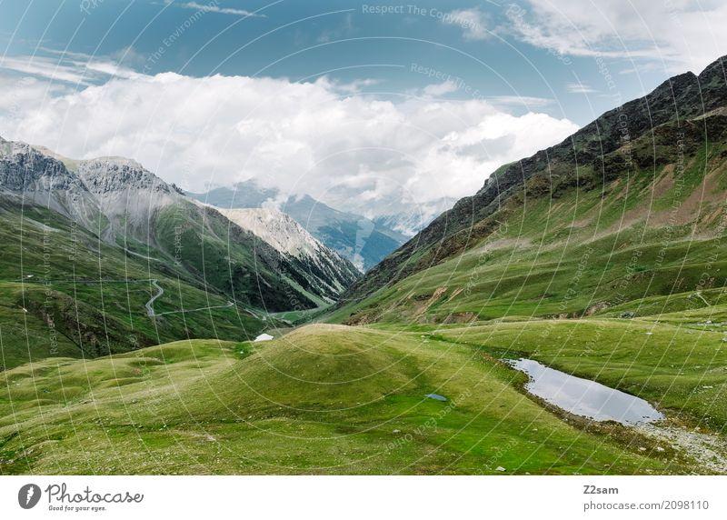 umbrailpass Umwelt Natur Landschaft Himmel Wolken Sommer Schönes Wetter Wiese Alpen Berge u. Gebirge Gletscher gigantisch Unendlichkeit hoch blau grün ruhig