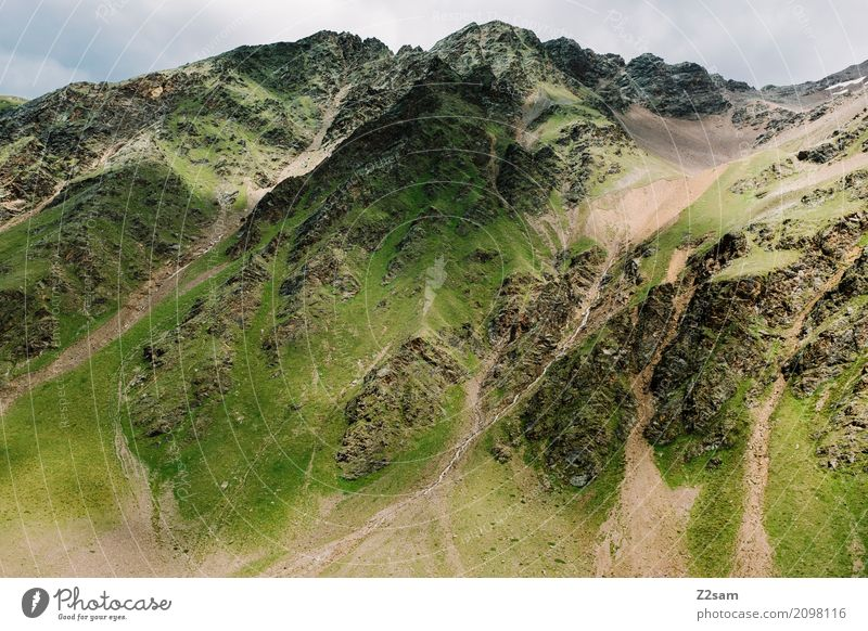 Umbrail Fahrradfahren Umwelt Natur Landschaft Himmel Wolken Klima Klimawandel schlechtes Wetter Wiese Alpen Berge u. Gebirge Gipfel Gletscher gigantisch