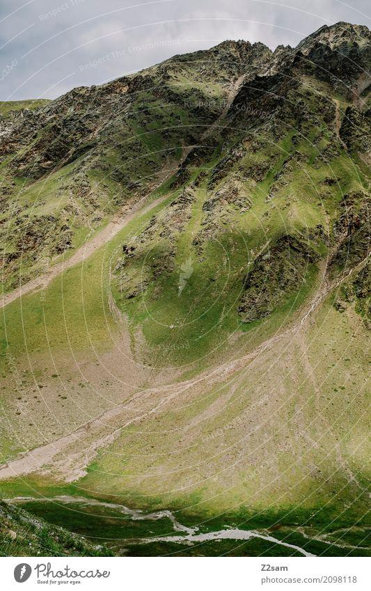 Gletscherpause Umwelt Natur Landschaft Wiese Felsen Alpen Berge u. Gebirge Gipfel ästhetisch gigantisch nachhaltig natürlich grün Einsamkeit Idylle Klima Schutz