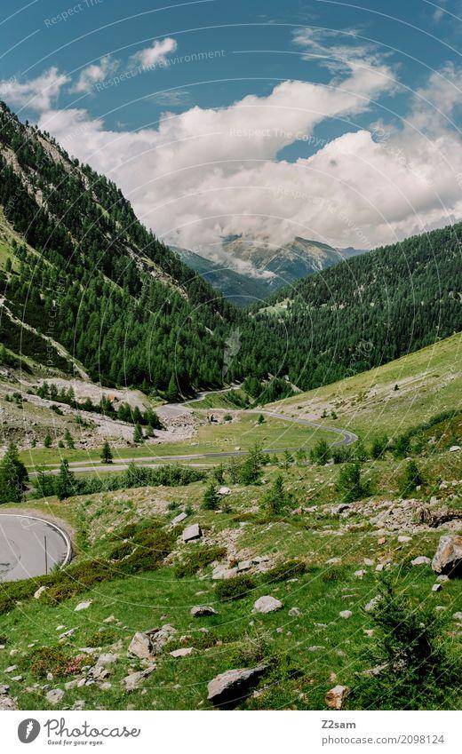 umbrailpass Natur Ferien & Urlaub & Reisen blau Sommer grün Landschaft Einsamkeit ruhig Berge u. Gebirge Straße Umwelt Wiese Tourismus Felsen Idylle