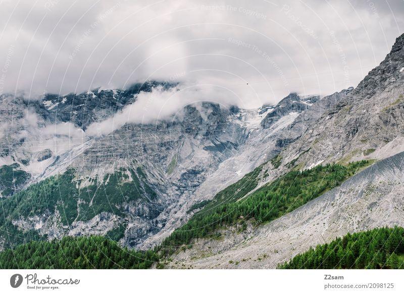 ortler Umwelt Natur Landschaft Himmel Wolken schlechtes Wetter Nebel Gewitter Wald Alpen Berge u. Gebirge Gipfel Gletscher bedrohlich gigantisch hoch natürlich