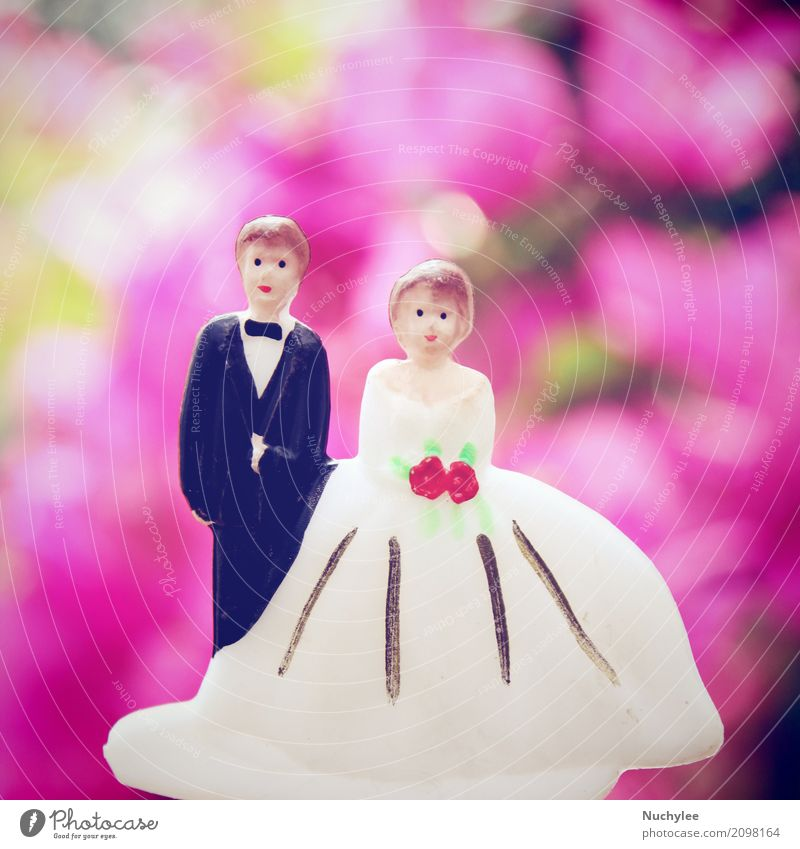 Hochzeitspaar Puppe Garten Dekoration & Verzierung Valentinstag Frau Erwachsene Mann Familie & Verwandtschaft Paar Blume Kleid Spielzeug Blumenstrauß Ornament