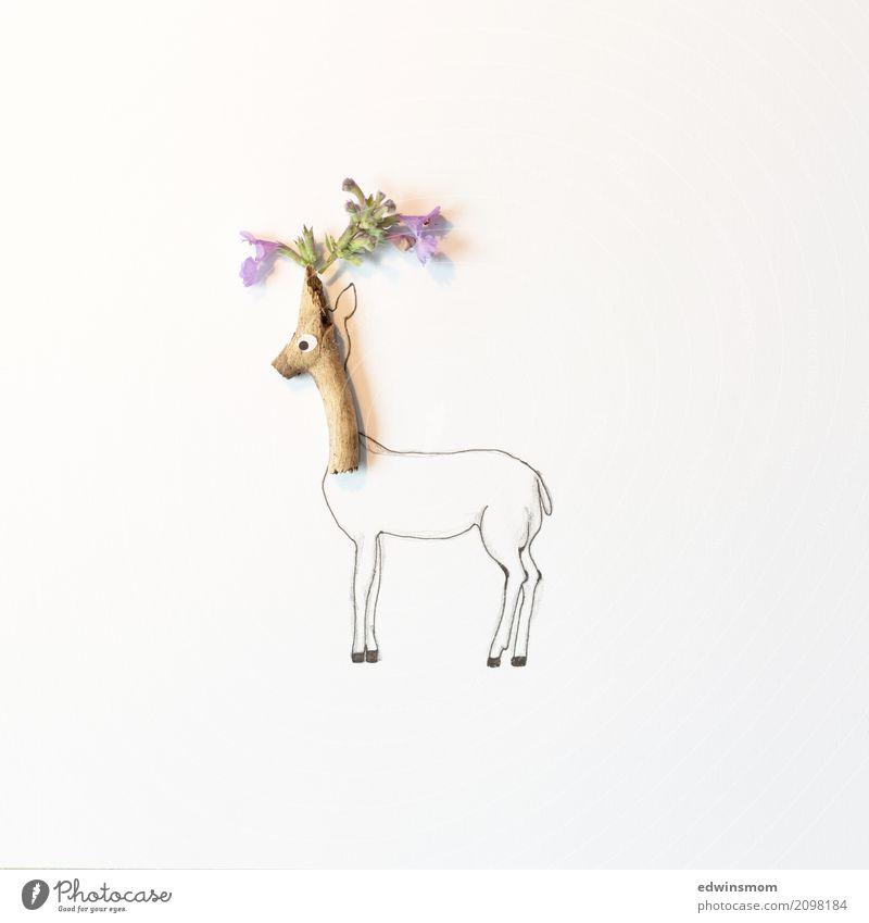Flower deer Freizeit & Hobby Basteln malen Pflanze Sommer Blüte Tier Wildtier Papier Dekoration & Verzierung Holz Blick stehen warten Fröhlichkeit natürlich