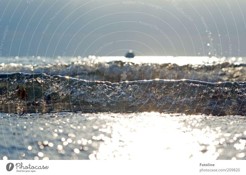 Wassergewalten Natur Himmel Meer Sommer Wärme hell Küste Wellen Umwelt nass Horizont nah natürlich Dynamik Ostsee Brandung