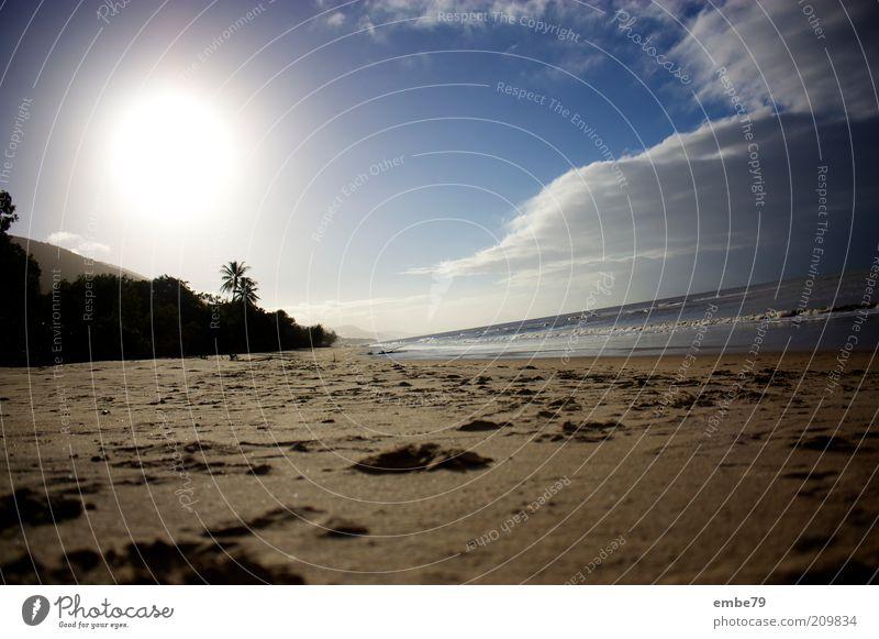 Palm Cove Umwelt Natur Landschaft Sand Wasser Himmel Wolken Sonne Sonnenlicht Schönes Wetter Strand Bucht Erholung Ferien & Urlaub & Reisen Wärme blau braun