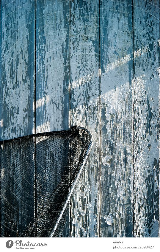 Schonzeit Gartenhaus Holzwand Mauer Wand Fassade Kescher Netz Fischereiwirtschaft Metall Kunststoff warten alt bedrohlich trashig trocken blau schwarz türkis