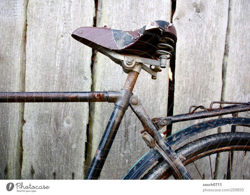 Esel mit Sattel alt Holz braun Fahrrad dreckig kaputt Wandel & Veränderung Vergänglichkeit verfallen Verfall Rost Vergangenheit Leder Nostalgie Bildausschnitt