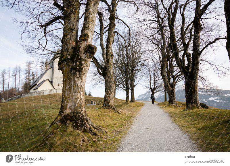 In der Schweiz Ausflug Abenteuer Ferne Sightseeing Berge u. Gebirge wandern Mensch maskulin Junger Mann Jugendliche Erwachsene 1 18-30 Jahre 30-45 Jahre Natur