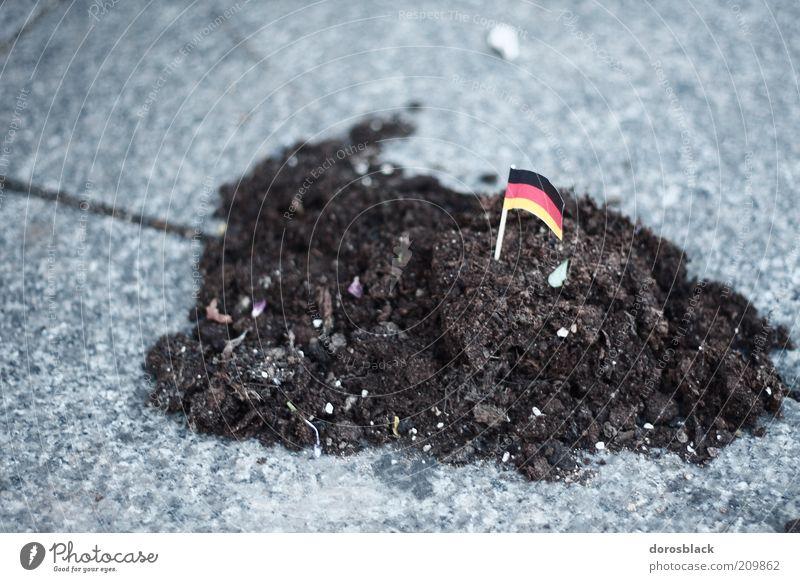 erdhäufchen gold rot schwarz Erde Fahne klein Deutschland Deutsche Flagge Farbfoto Nahaufnahme Tag Schwache Tiefenschärfe Zentralperspektive Patriotismus