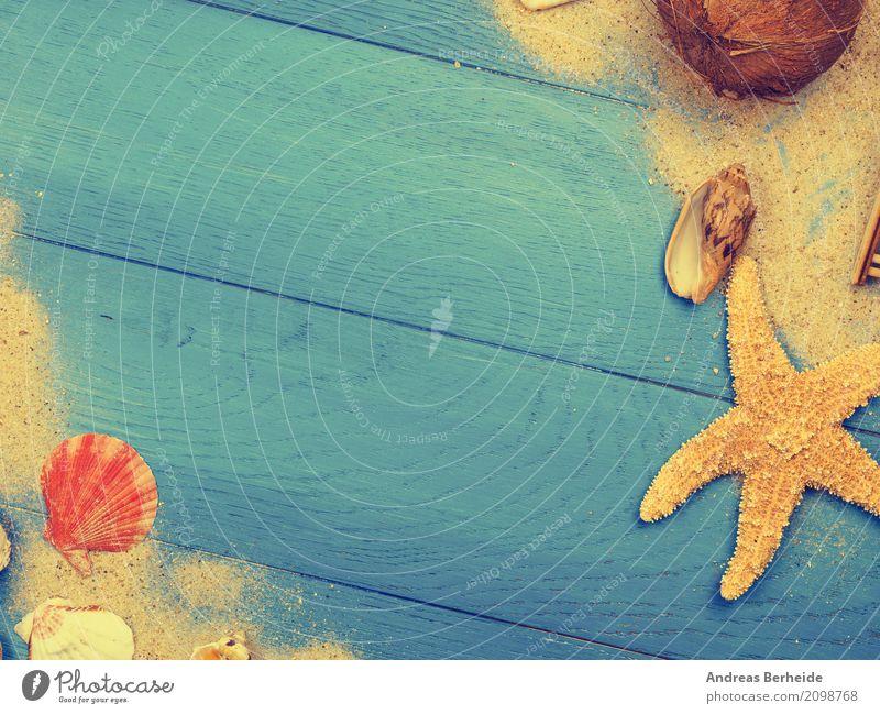 Fernweh Design Ferien & Urlaub & Reisen Strand Sand Erholung Hintergrundbild textured old fence natural pattern timber decorative abstract surface Paneele plank