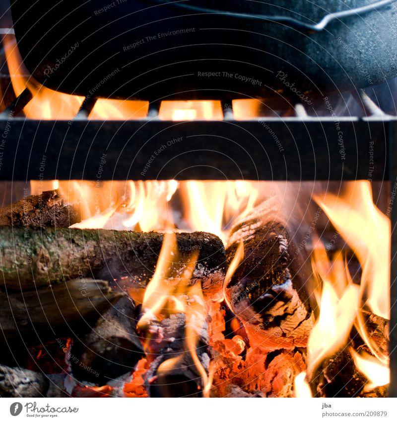 gault millau plus! Ernährung Feuer Grill Rost Pfanne Holz Farbfoto Menschenleer Tag Licht Feuerrost Feuerstelle Flamme Glut heiß Wärme glühen glühend brennen