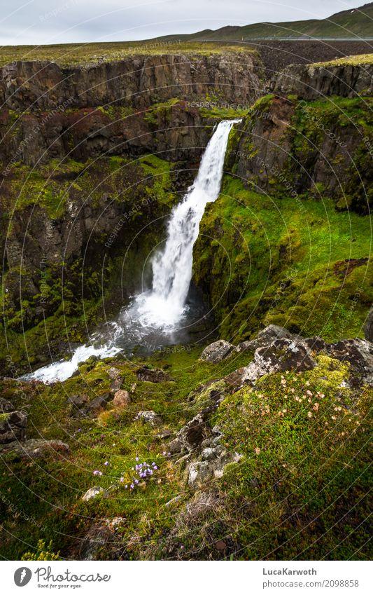Wasserfall Island Umwelt Natur Landschaft Pflanze Wetter Blume Gras Sträucher Moos Felsen Berge u. Gebirge Bucht Menschenleer Sehenswürdigkeit Straße Stimmung