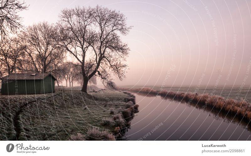 Winterstimmung II Angeln Kunst Umwelt Natur Landschaft Pflanze Urelemente Wasser Nebel Eis Frost Baum Feld Küste Flussufer Dorf bevölkert Hütte ästhetisch blau