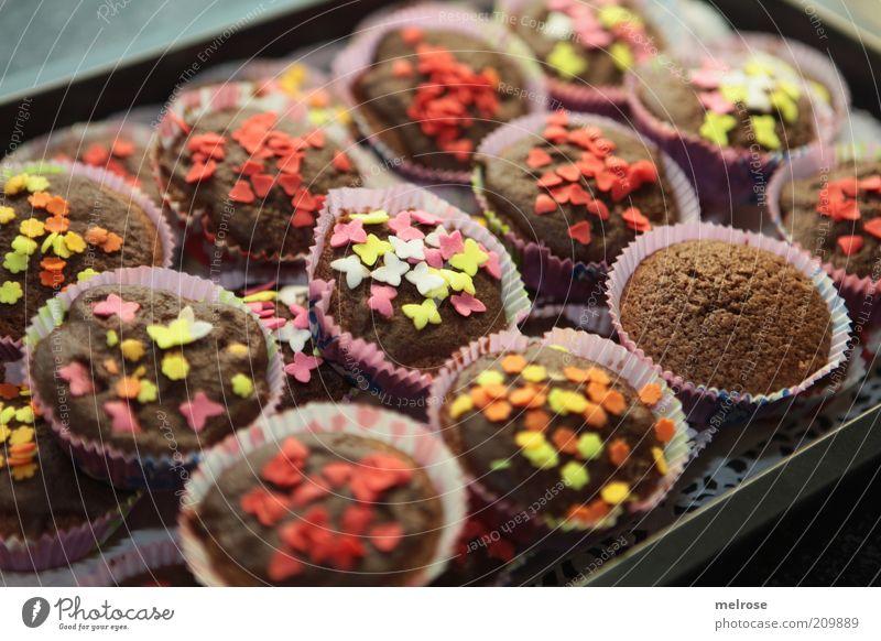 ready for the party braun Lebensmittel Foodfotografie süß Süßwaren Kuchen Backwaren Schokolade Teigwaren Muffin Kalorie Streusel mehrfarbig Kalorienreich