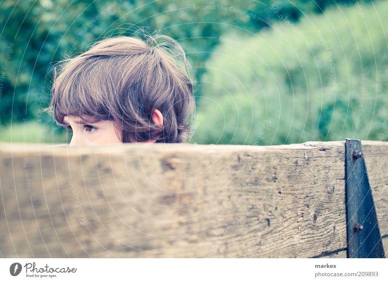 Mensch Kind Jugendliche gelb Junge Holz Kopf retro natürlich Kindheit Vergangenheit Kleinkind Nostalgie trendy grün Gelbstich