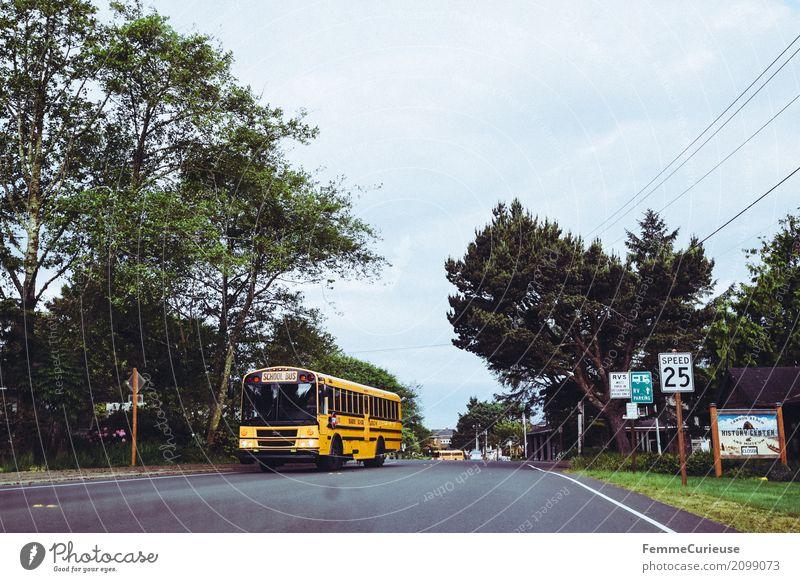 Roadtrip West Coast USA (133) Verkehr Verkehrsmittel Verkehrswege Personenverkehr Öffentlicher Personennahverkehr Straßenverkehr Bewegung Schulbus Westküste