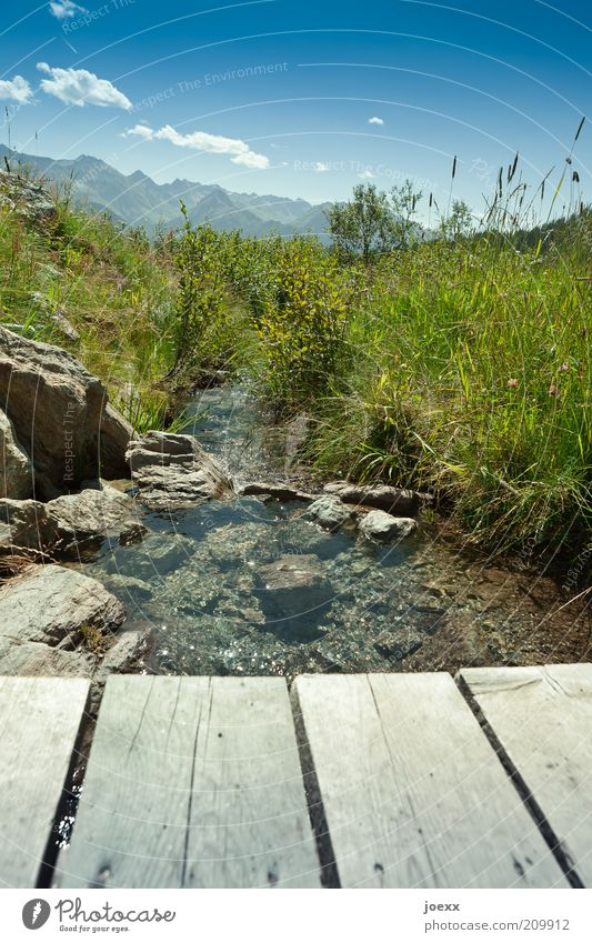 Nicht vom Beckenrand springen! Natur Wasser grün blau Sommer Ferien & Urlaub & Reisen Wiese Gras Berge u. Gebirge Landschaft Umwelt frisch Brücke