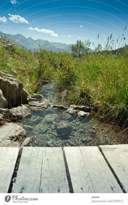 Nicht vom Beckenrand springen! Sommer Berge u. Gebirge Natur Landschaft Wasser Schönes Wetter Gras Wiese Alpen Bach frisch blau grün Freizeit & Hobby Umwelt