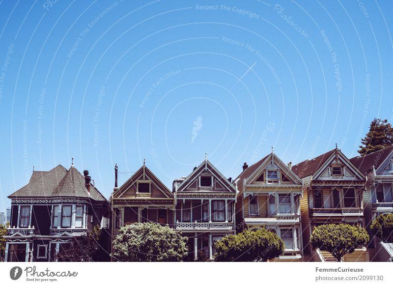 Roadtrip West Coast USA (278) Stadt Ferien & Urlaub & Reisen San Francisco Sehenswürdigkeit Tourismus painted ladies Häuserzeile Haus Wohnhochhaus Baum