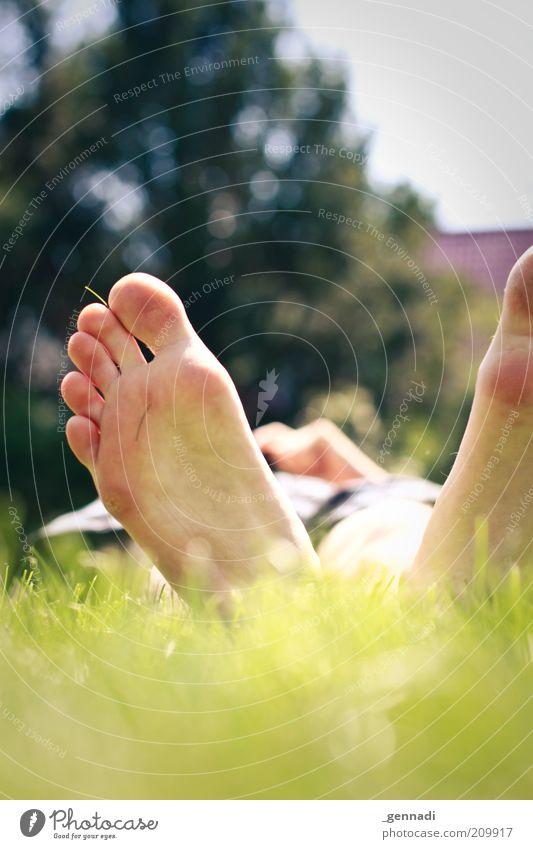 Mit Ruhe und Gemütlichkeit Mensch Mann Erwachsene Fuß Fußsohle 1 Umwelt Pflanze Erde Gras Wiese Garten liegen grün ruhig gemütlich Erholung träumen Farbfoto