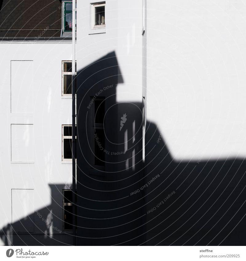 schattiert Stadt Haus Mauer Wand Fassade Fenster Ordnung Schwarzweißfoto Außenaufnahme Licht Schatten Kontrast Silhouette Menschenleer Stadthaus
