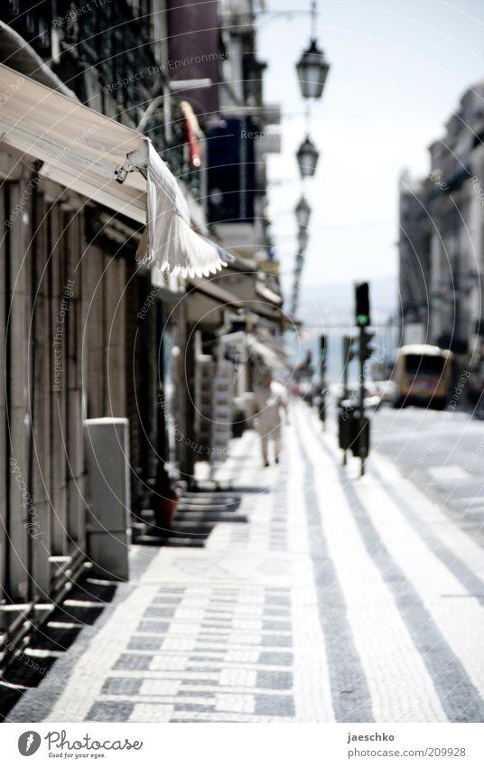 Midday in Lisbon Stadt Ferien & Urlaub & Reisen Einsamkeit Straße Wärme Stimmung hell Straßenverkehr Verkehr Perspektive heiß Laterne Bürgersteig Stadtzentrum Tiefenschärfe Licht