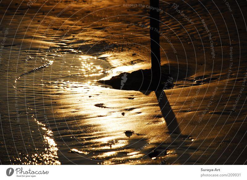 Goldenes Watt Natur Wasser schön Meer Sommer ruhig dunkel Sand Landschaft glänzend nass gold Insel weich Sehnsucht