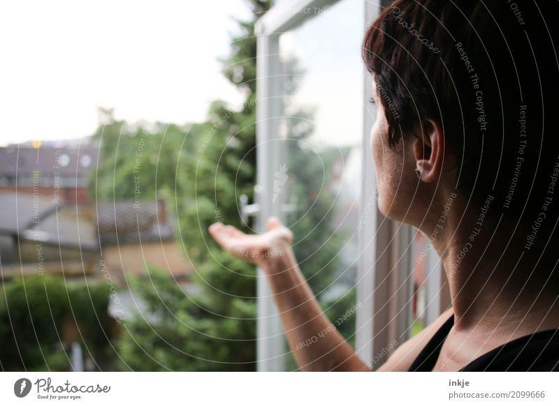 Analoge Wettervorhersage Lifestyle Freizeit & Hobby Häusliches Leben Wohnung Frau Erwachsene Kopf Arme Hand 1 Mensch 30-45 Jahre Umwelt Sommer Klima Klimawandel