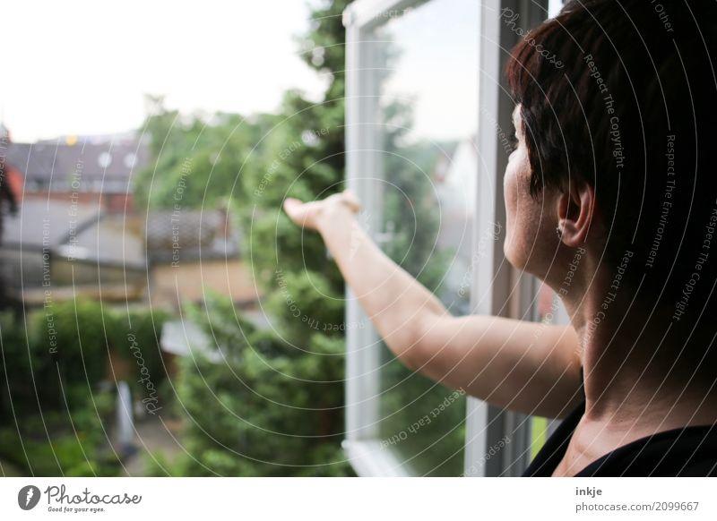 Meteorologie basic Mensch Frau Sommer Haus Fenster Erwachsene Leben Umwelt Lifestyle Frühling Garten Kopf Wohnung Häusliches Leben Freizeit & Hobby Regen