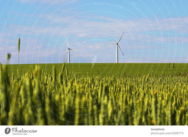 Landschaft mit Windmühlen für grüne elektrische Energie Himmel Natur blau Umwelt Metall Technik & Technologie Klima Industrie Sauberkeit Bauernhof Generation