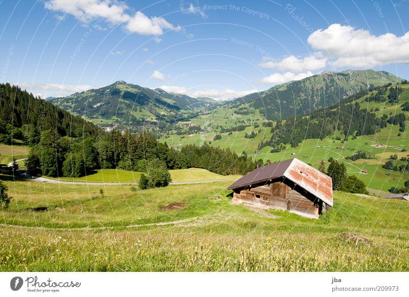 heile Welt Natur grün Pflanze Ferien & Urlaub & Reisen Sommer Wolken Haus Erholung Umwelt Landschaft Wiese Berge u. Gebirge Freiheit Holz wandern Tourismus