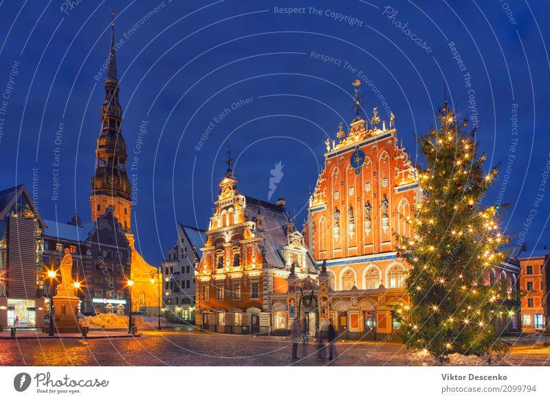 Weihnachtsbaum auf Rathausplatz in Riga Ferien & Urlaub & Reisen alt Weihnachten & Advent Stadt Baum Haus Winter Architektur Straße Gebäude Stein Tourismus