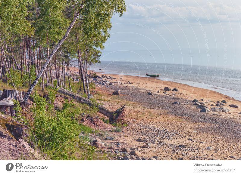Wilder Strand der Ostsee im Frühjahr schön ruhig Ferien & Urlaub & Reisen Tourismus Sommer Sonne Meer Umwelt Natur Landschaft Himmel Wolken Horizont Herbst