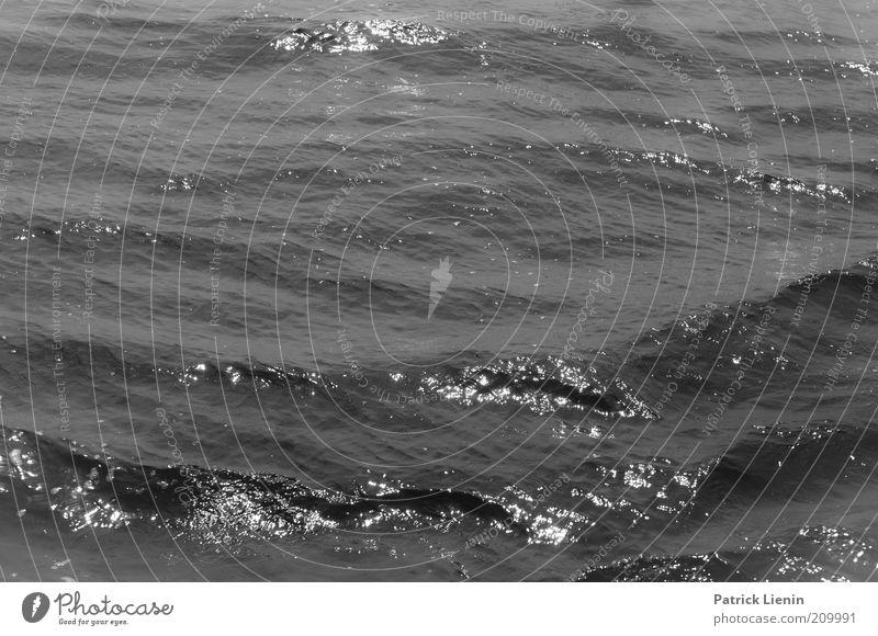 black water Umwelt Urelemente Wasser Klima Wind Wellen Nordsee Meer beobachten Bewegung entdecken genießen Blick außergewöhnlich bedrohlich dunkel Flüssigkeit